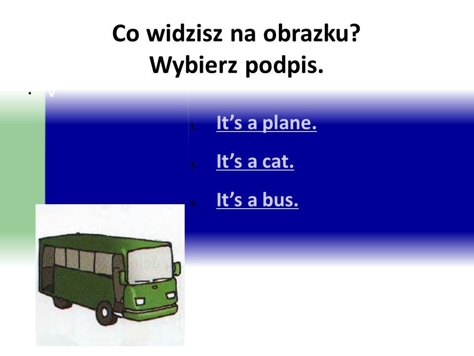 Co widzisz na obrazku? Wybierz podpis. 1. It's a plane. It's a plane. 2. It's a cat. It's a cat. 3. It's a bus. It's a bus. V