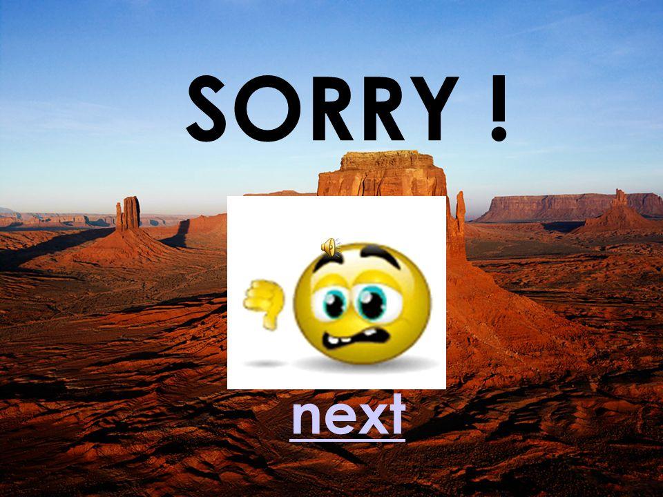 SORRY ! next next