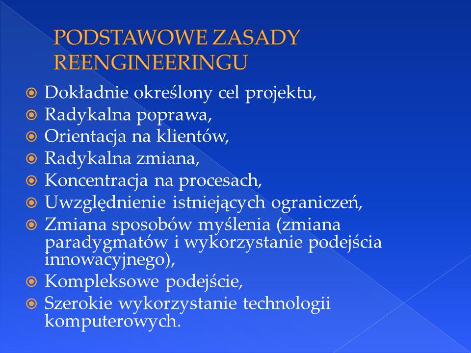  Dokładnie określony cel projektu,  Radykalna poprawa,  Orientacja na klientów,  Radykalna zmiana,  Koncentracja na procesach,  Uwzględnienie istniejących ograniczeń,  Zmiana sposobów myślenia (zmiana paradygmatów i wykorzystanie podejścia innowacyjnego),  Kompleksowe podejście,  Szerokie wykorzystanie technologii komputerowych.