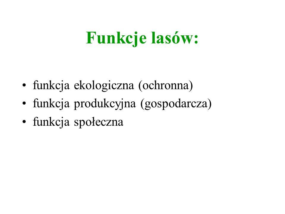Funkcje lasów: funkcja ekologiczna (ochronna) funkcja produkcyjna (gospodarcza) funkcja społeczna