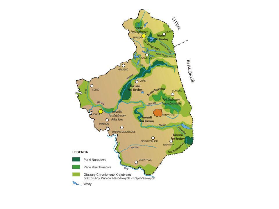 Tereny pod ochroną są ujęte w system ekologiczny obszarów chronionych obecnie 31,9% powierzchni ziemi podlaskiej 26% przy wdrożeniu Europejskiego Systemu Obszarów Chronionych – Natura 2000
