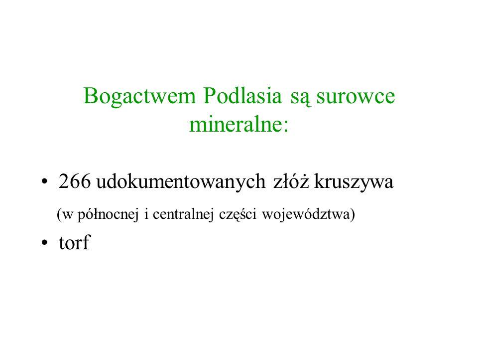 Bogactwem Podlasia są surowce mineralne: 266 udokumentowanych złóż kruszywa (w północnej i centralnej części województwa) torf