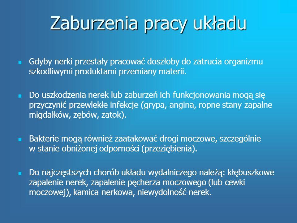 Zaburzenia pracy układu Gdyby nerki przestały pracować doszłoby do zatrucia organizmu szkodliwymi produktami przemiany materii.
