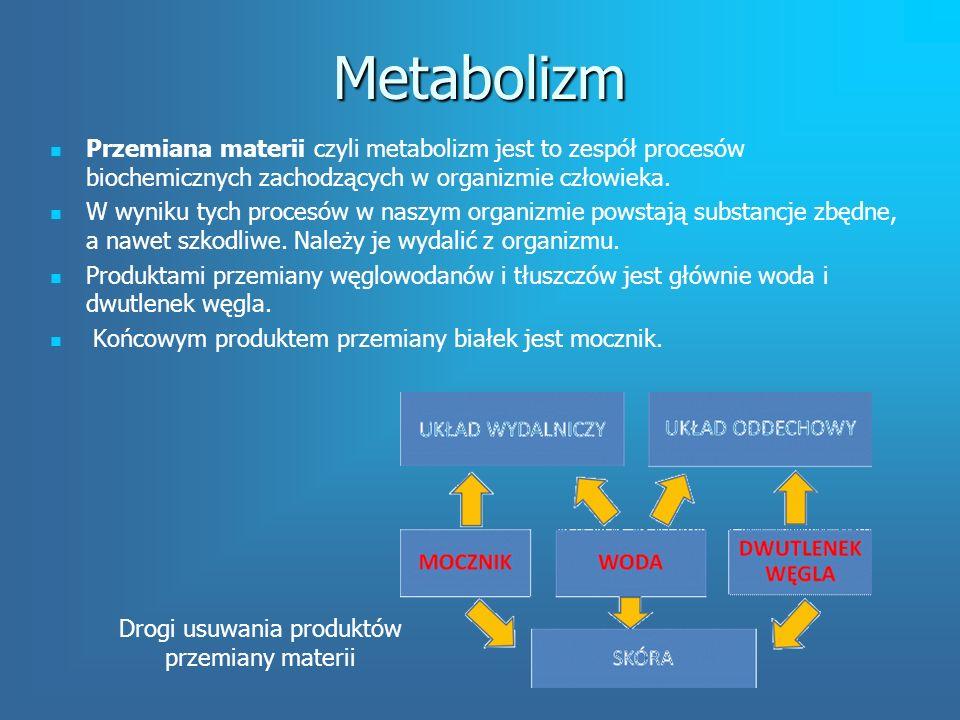 Wydalanie Wydalanie to proces usuwania z organizmu zbędnych i szkodliwych produktów przemiany materii.