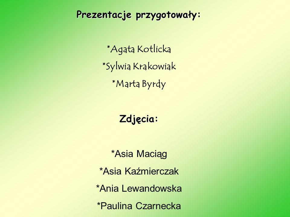Prezentacje przygotowały: *Agata Kotlicka *Sylwia Krakowiak *Marta Byrdy Zdjęcia: *Asia Maciąg *Asia Kaźmierczak *Ania Lewandowska *Paulina Czarnecka
