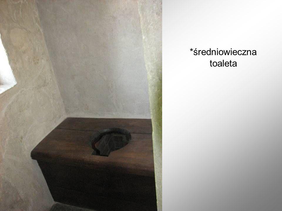 *średniowieczna toaleta