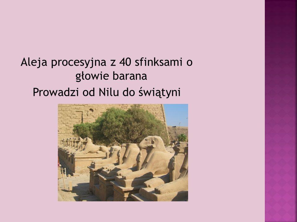 Aleja procesyjna z 40 sfinksami o głowie barana Prowadzi od Nilu do świątyni