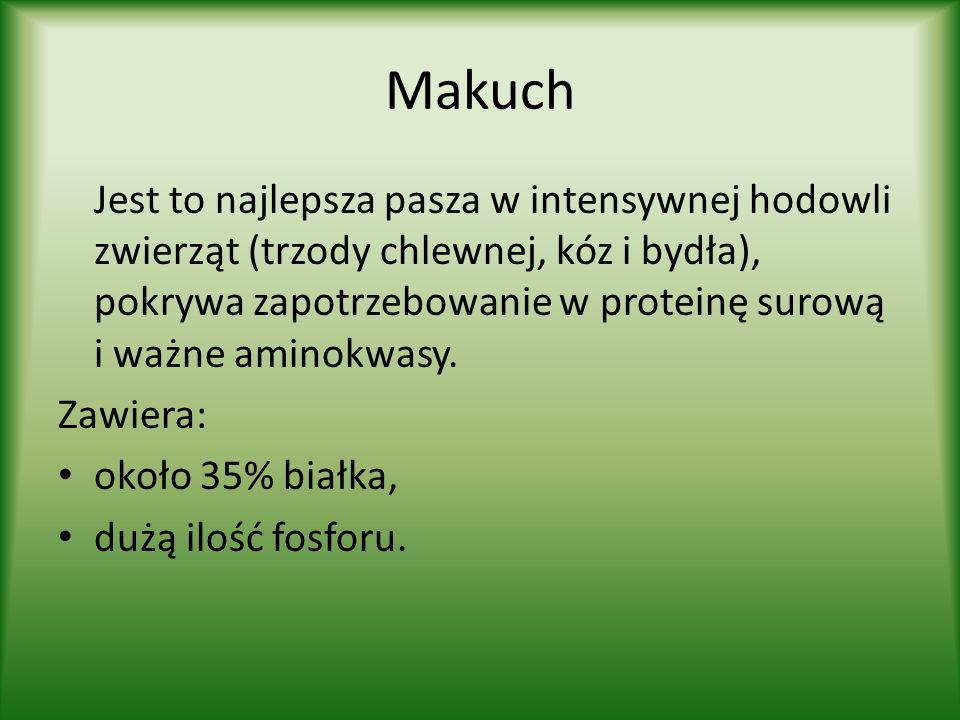 Makuch Jest to najlepsza pasza w intensywnej hodowli zwierząt (trzody chlewnej, kóz i bydła), pokrywa zapotrzebowanie w proteinę surową i ważne aminokwasy.