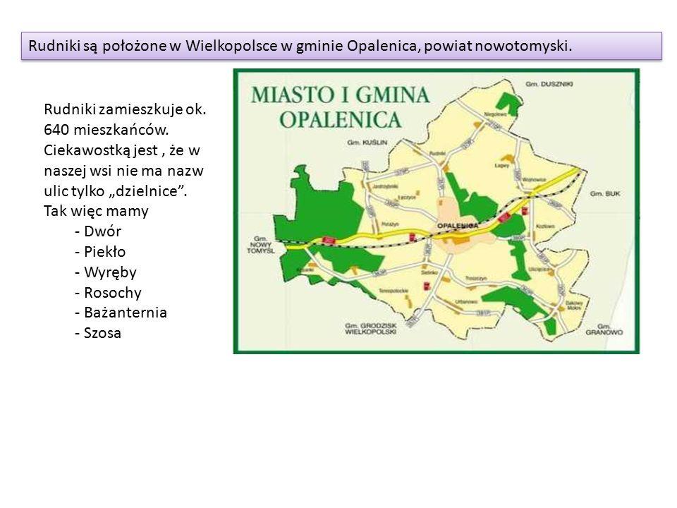 Rudniki są położone w Wielkopolsce w gminie Opalenica, powiat nowotomyski.
