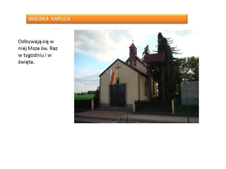 W naszej wsi jest kilka zabytków: Pałac w którym mieści się nasza szkoła Pałac z 1925r.