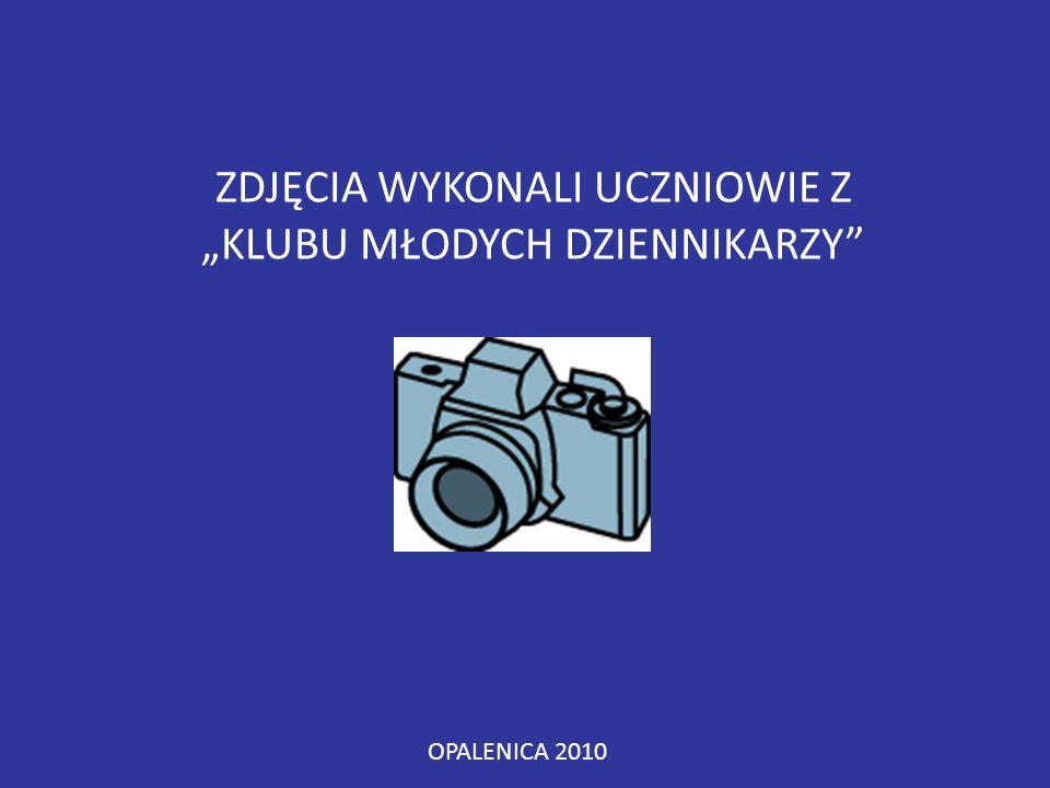 """ZDJĘCIA WYKONALI UCZNIOWIE Z """"KLUBU MŁODYCH DZIENNIKARZY OPALENICA 2010"""