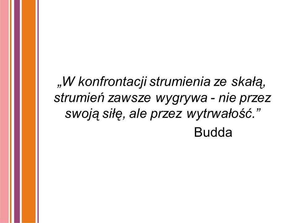 """""""W konfrontacji strumienia ze skałą, strumień zawsze wygrywa - nie przez swoją siłę, ale przez wytrwałość. Budda"""