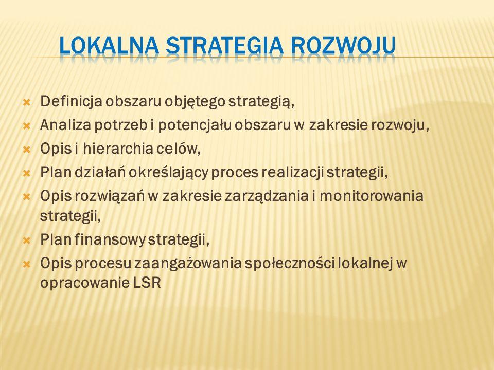  Definicja obszaru objętego strategią,  Analiza potrzeb i potencjału obszaru w zakresie rozwoju,  Opis i hierarchia celów,  Plan działań określający proces realizacji strategii,  Opis rozwiązań w zakresie zarządzania i monitorowania strategii,  Plan finansowy strategii,  Opis procesu zaangażowania społeczności lokalnej w opracowanie LSR