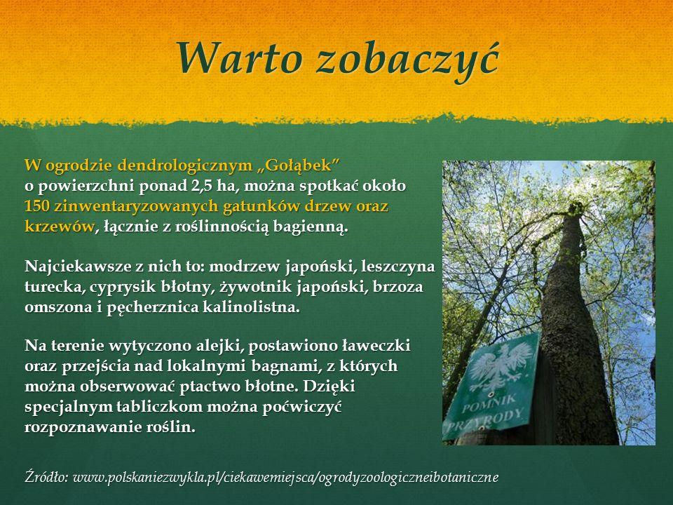"""Ścieżka przyrodniczo-dydaktyczna """"Jelenia Wyspa obejmuje: 1.Rzeka Stążka 2.Naturalne odnowienie lasu 3.Torfowisko 4.Ptasia remiza 5.Bagna nad Stążką 6.Paśniki dla zwierzyny leśnej 7.Las naturalny 8.Ochrona lasu przed owadami 9.Drzewa doborowe 10.Mrowiska Warto zobaczyć"""