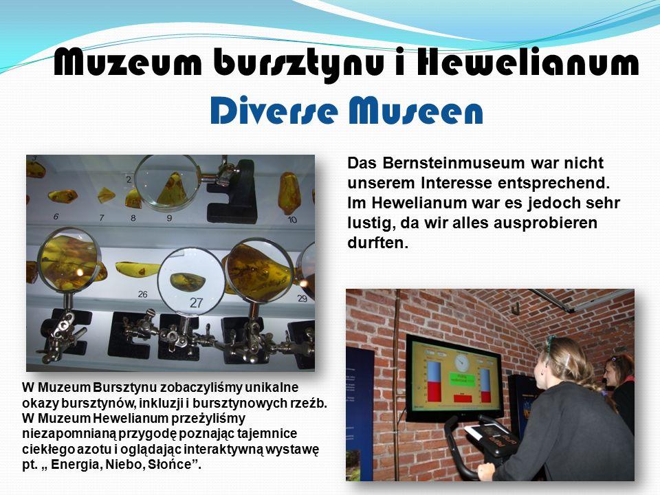 Muzeum bursztynu i Hewelianum Diverse Museen W Muzeum Bursztynu zobaczyliśmy unikalne okazy bursztynów, inkluzji i bursztynowych rzeźb.