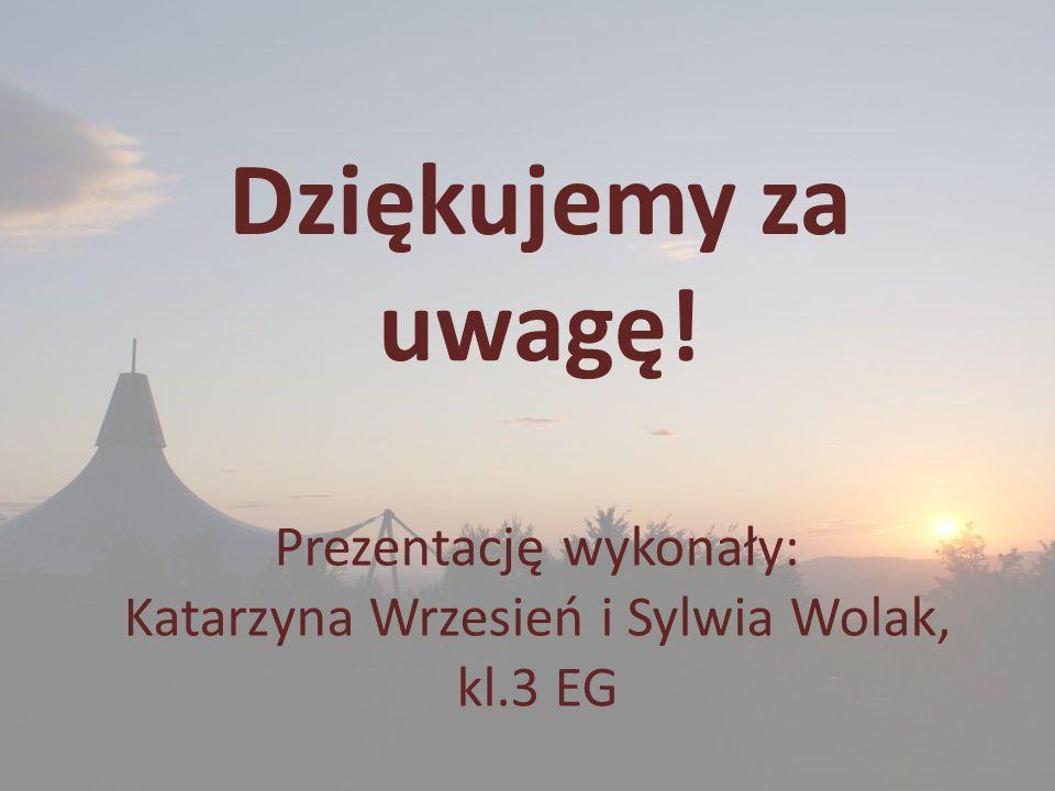 Prezentację wykonały: Katarzyna Wrzesień i Sylwia Wolak, kl.3 EG Dziękujemy za uwagę!
