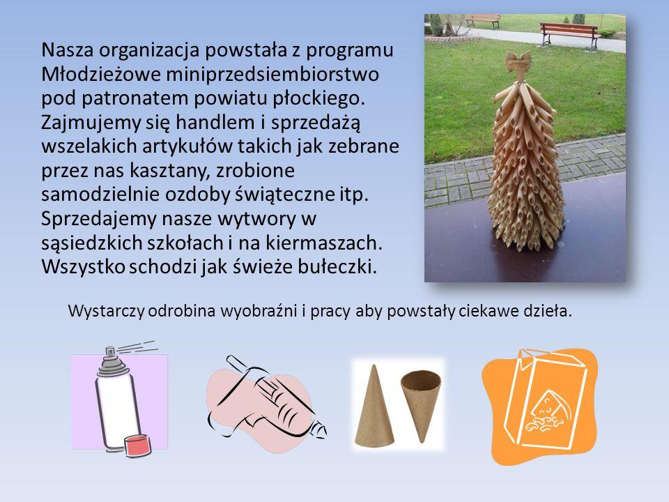 OPN – Organizacja Pomysłowych Nastolatków sp.j.