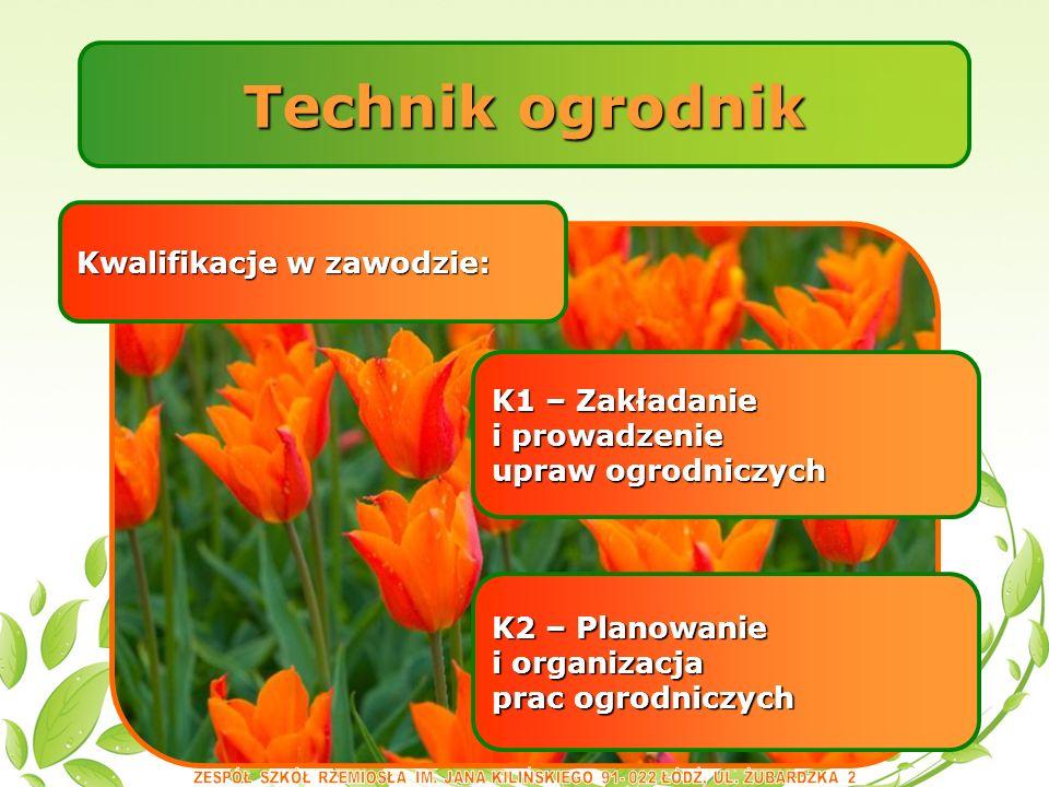 Technik ogrodnik Kwalifikacje w zawodzie: K2 – Planowanie i organizacja prac ogrodniczych K1 – Zakładanie i prowadzenie upraw ogrodniczych