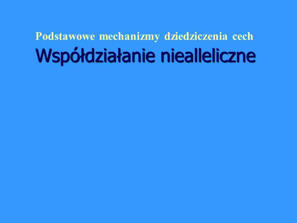 Współdziałanie niealleliczne Podstawowe mechanizmy dziedziczenia cech Współdziałanie niealleliczne