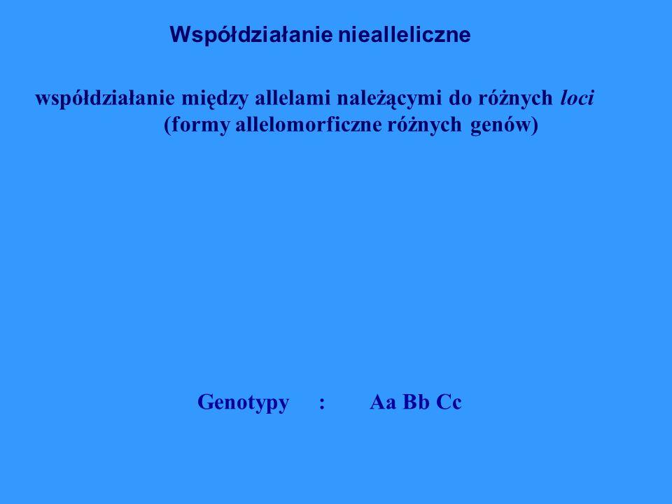 współdziałanie między allelami należącymi do różnych loci (formy allelomorficzne różnych genów) Współdziałanie niealleliczne Genotypy : Aa Bb Cc