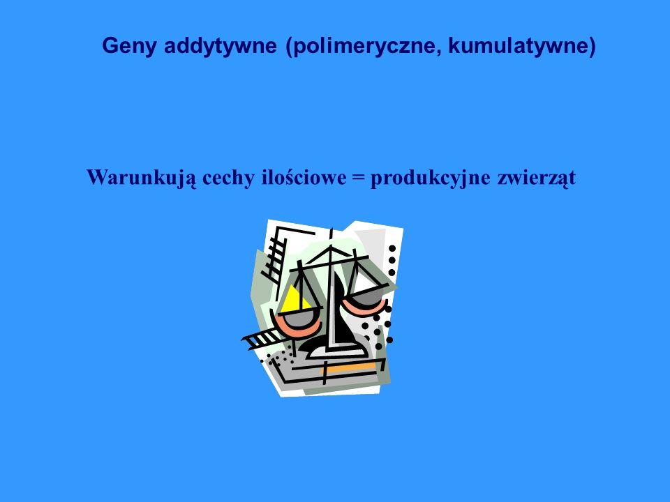 Geny addytywne (polimeryczne, kumulatywne) Warunkują cechy ilościowe = produkcyjne zwierząt