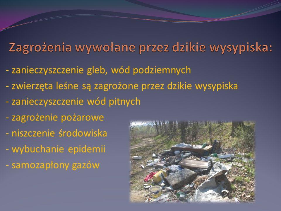 Nielegalne miejsca składowania śmieci są problemem, z którym władze samorządowe zmagają się od wielu lat.
