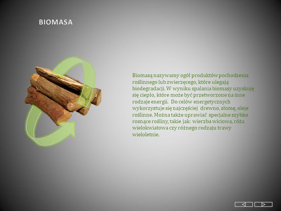 Biomasą nazywamy ogół produktów pochodzenia roślinnego lub zwierzęcego, które ulegają biodegradacji.