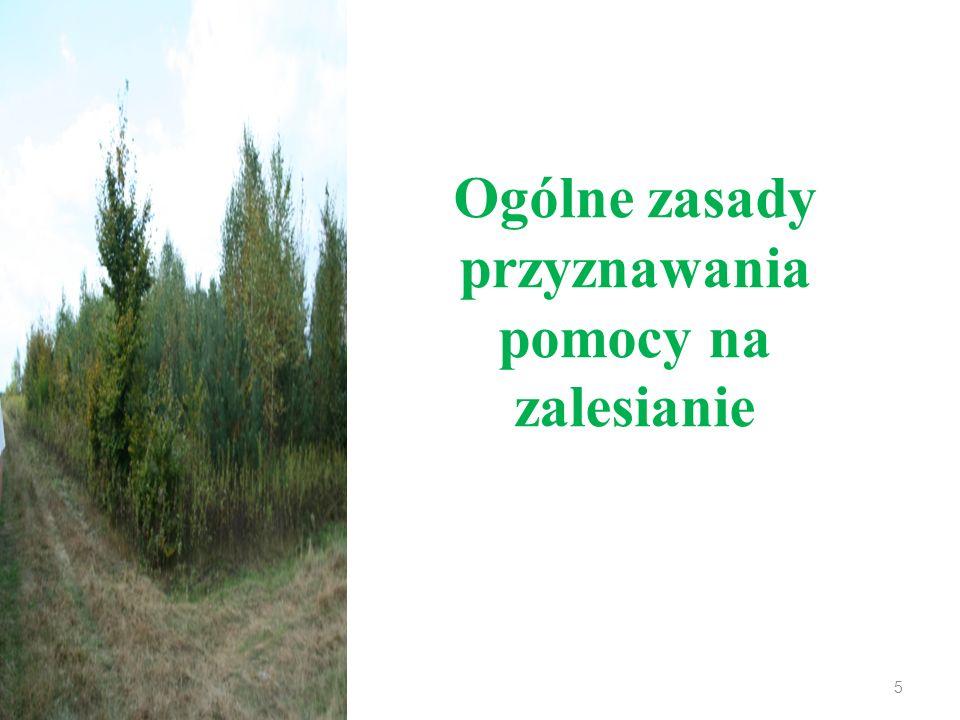 Ogólne zasady przyznawania pomocy na zalesianie 5