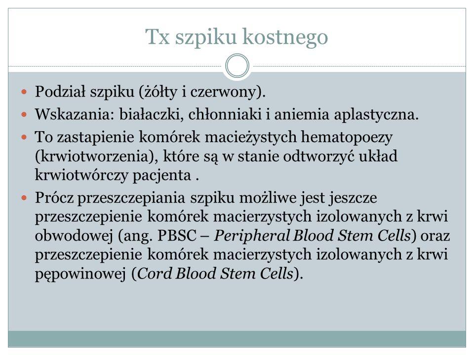 Tx szpiku kostnego Podział szpiku (żółty i czerwony). Wskazania: białaczki, chłonniaki i aniemia aplastyczna. To zastapienie komórek macieżystych hema