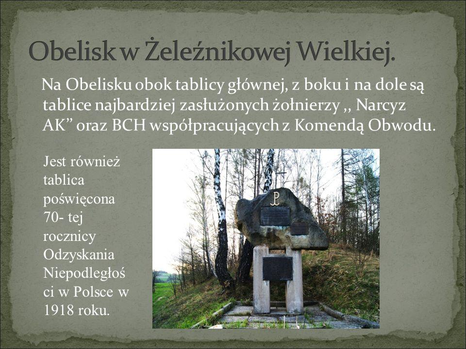 Na Obelisku obok tablicy głównej, z boku i na dole są tablice najbardziej zasłużonych żołnierzy,, Narcyz AK'' oraz BCH współpracujących z Komendą Obwo
