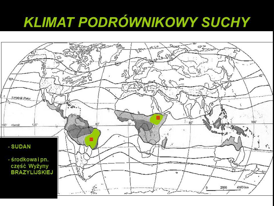 - SUDAN - środkowa i pn. część Wyżyny BRAZYLIJSKIEJ KLIMAT PODRÓWNIKOWY SUCHY