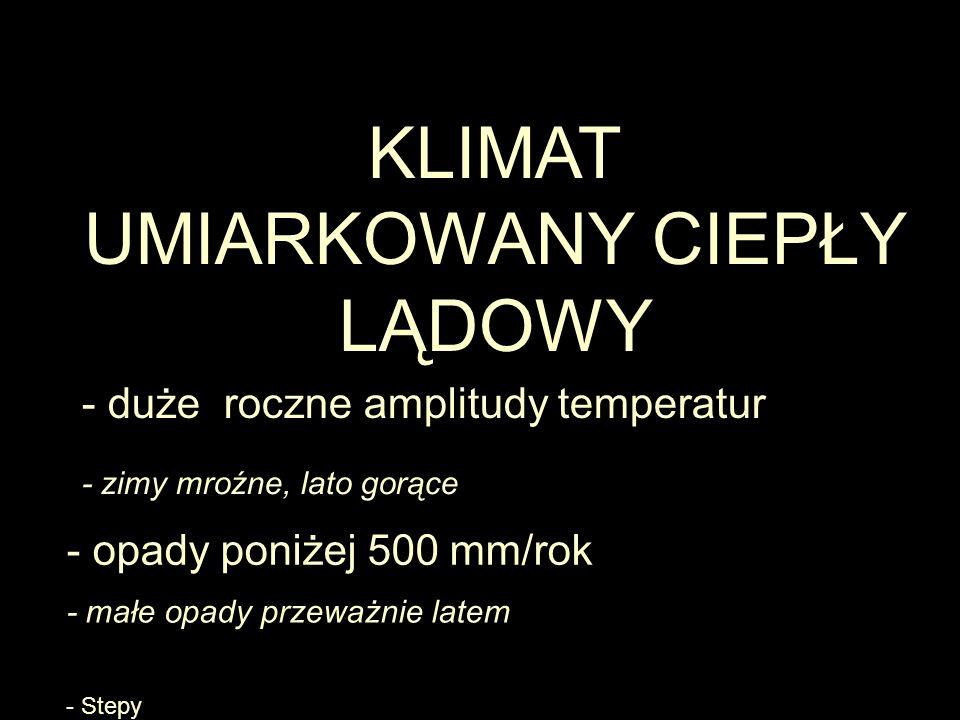 KLIMAT UMIARKOWANY CIEPŁY LĄDOWY - duże roczne amplitudy temperatur - zimy mroźne, lato gorące - Stepy - opady poniżej 500 mm/rok - małe opady przeważnie latem