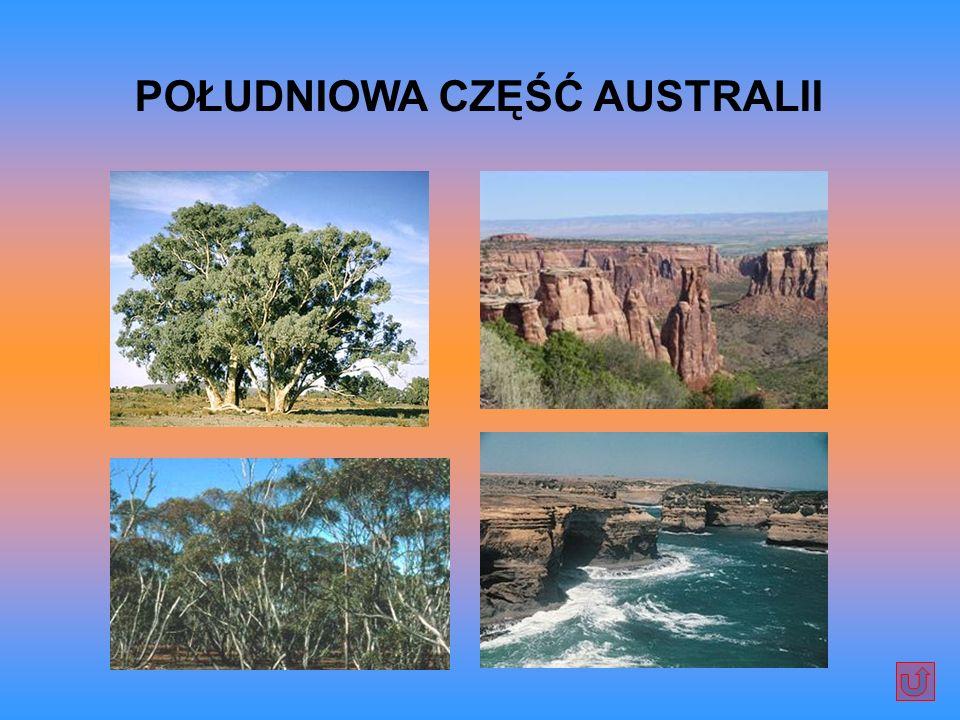 POŁUDNIOWA CZĘŚĆ AUSTRALII