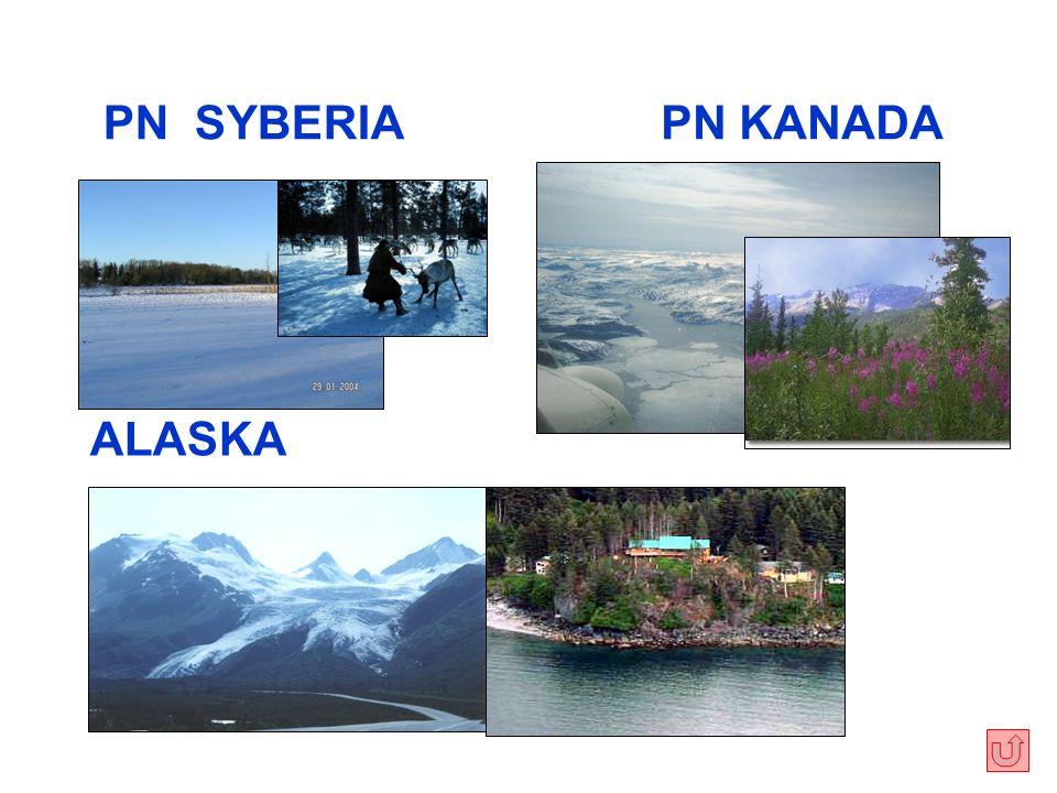 PN SYBERIA ALASKA PN KANADA