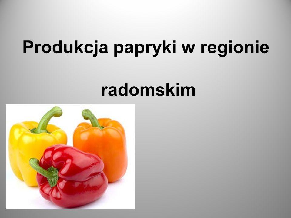 Produkcja papryki w regionie radomskim