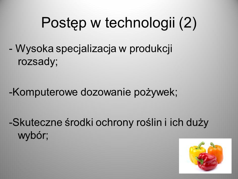Postęp w technologii (2) - Wysoka specjalizacja w produkcji rozsady; -Komputerowe dozowanie pożywek; -Skuteczne środki ochrony roślin i ich duży wybór;