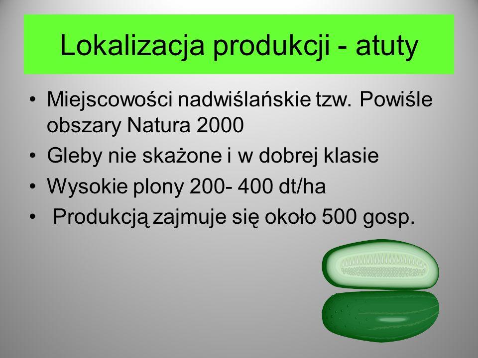 Lokalizacja produkcji - atuty Miejscowości nadwiślańskie tzw.