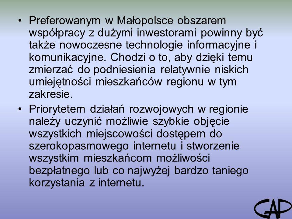 Preferowanym w Małopolsce obszarem współpracy z dużymi inwestorami powinny być także nowoczesne technologie informacyjne i komunikacyjne.