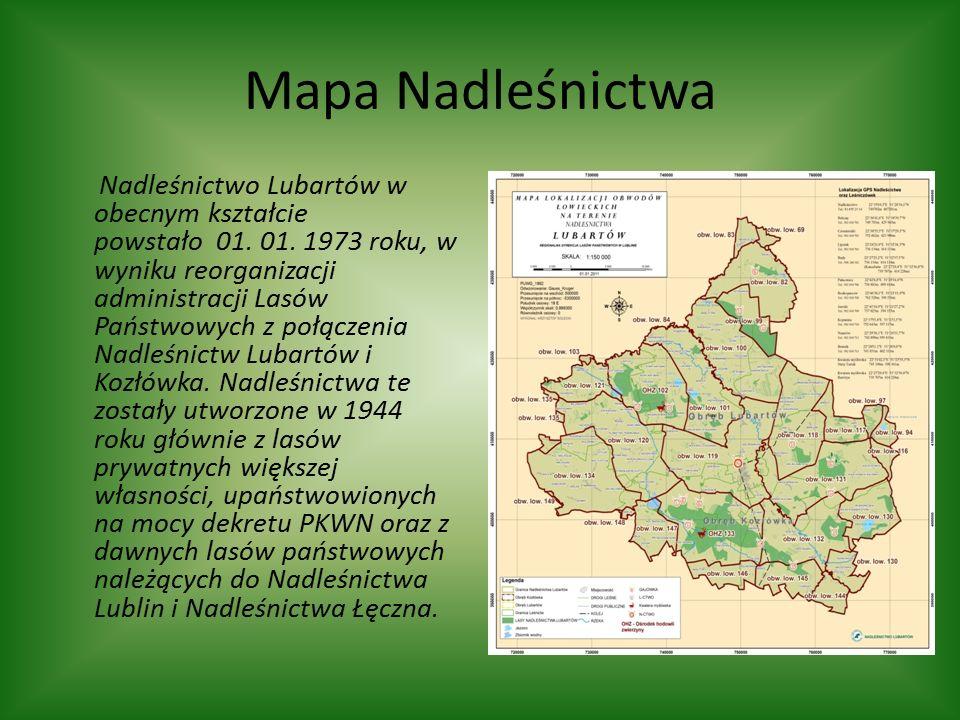 Mapa Nadleśnictwa Nadleśnictwo Lubartów w obecnym kształcie powstało 01.