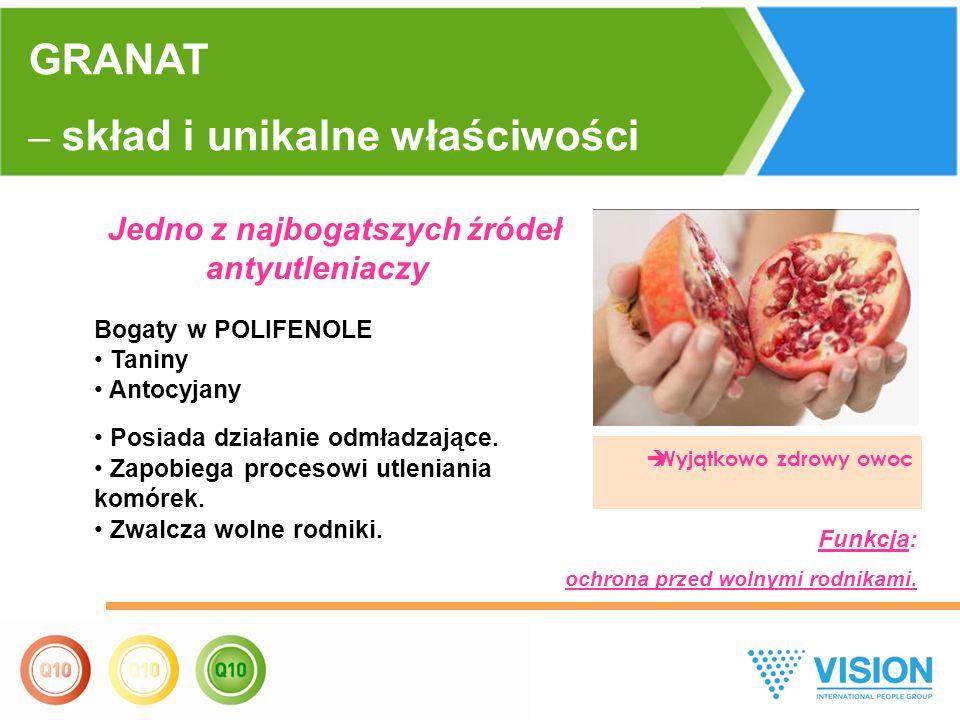  Wyjątkowo zdrowy owoc GRANAT – skład i unikalne właściwości Jedno z najbogatszych źródeł antyutleniaczy Bogaty w POLIFENOLE Taniny Antocyjany Posiada działanie odmładzające.