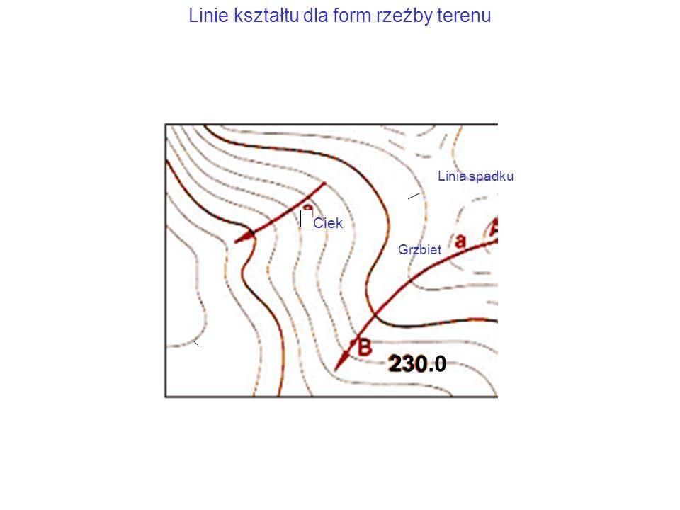 Linie kształtu dla form rzeźby terenu Ciek Grzbiet Linia spadku 230.0