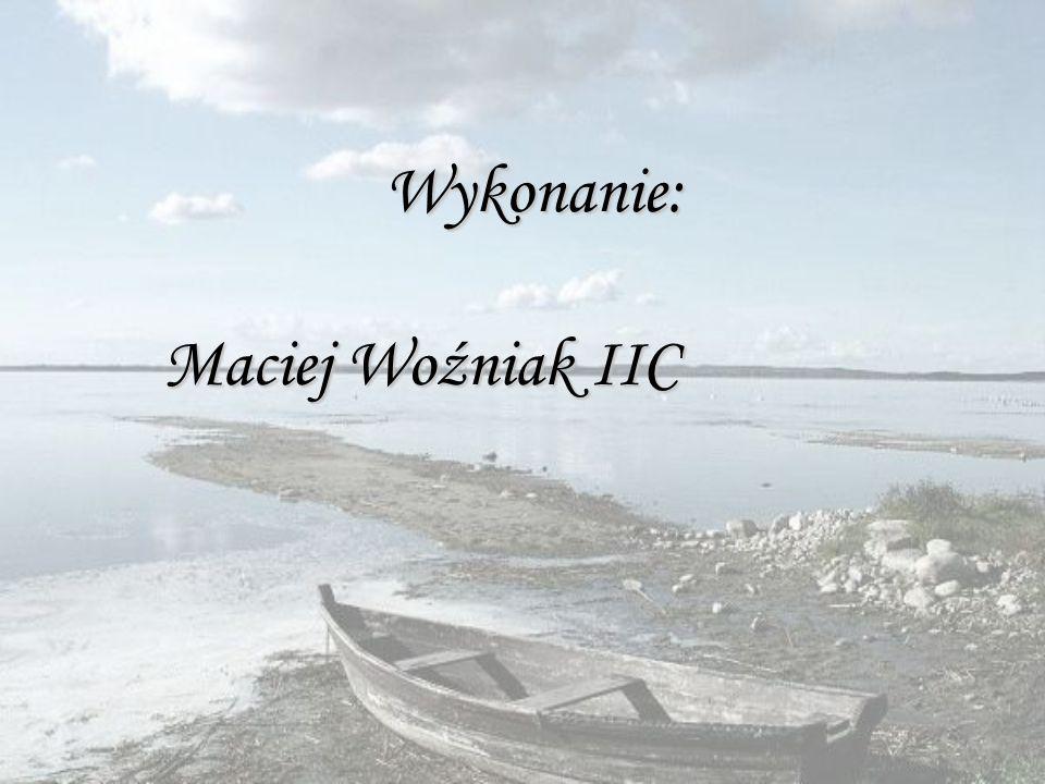 Wykonanie: Maciej Woźniak IIC