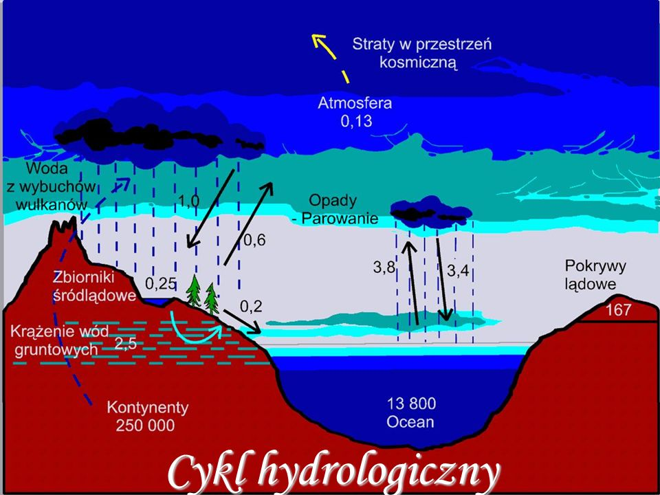 Wody słodkie: - rzeki, jeziora (nadbrzeżne, przydeltowe, morenowe, rynnowe, cyrkowe, krasowe, tektoniczne, kraterowe) i bagna, wody gruntowe i podziemne, lodowce, pokrywa śnieżna i para wodna w atmosferze Wody słone: - oceany i morza (zatoki i morza = część przybrzeżna oceanów, oprócz Morza Kaspijskiego, które jest jeziorem o powierzchni 376 km2), czyli wszechocean (ocean światowy).