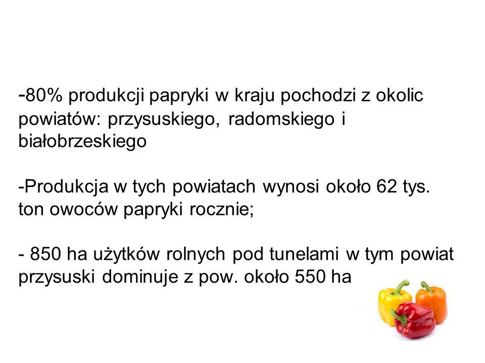 - 80% produkcji papryki w kraju pochodzi z okolic powiatów: przysuskiego, radomskiego i białobrzeskiego -Produkcja w tych powiatach wynosi około 62 tys.
