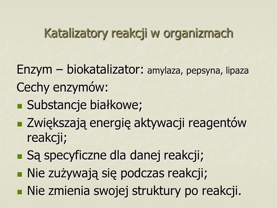 Katalizatory reakcji w organizmach Enzym – biokatalizator: amylaza, pepsyna, lipaza Cechy enzymów: Substancje białkowe; Substancje białkowe; Zwiększają energię aktywacji reagentów reakcji; Zwiększają energię aktywacji reagentów reakcji; Są specyficzne dla danej reakcji; Są specyficzne dla danej reakcji; Nie zużywają się podczas reakcji; Nie zużywają się podczas reakcji; Nie zmienia swojej struktury po reakcji.