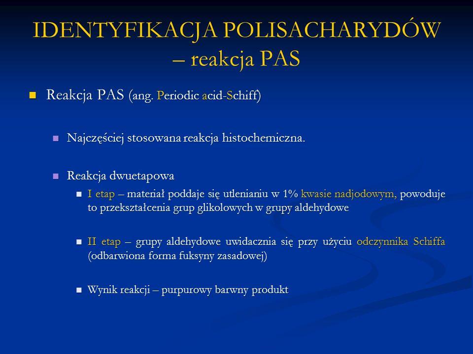 IDENTYFIKACJA POLISACHARYDÓW – reakcja PAS Reakcja PAS ( ang.