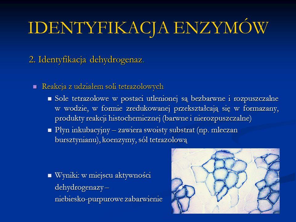 IDENTYFIKACJA ENZYMÓW 2. Identyfikacja dehydrogenaz.