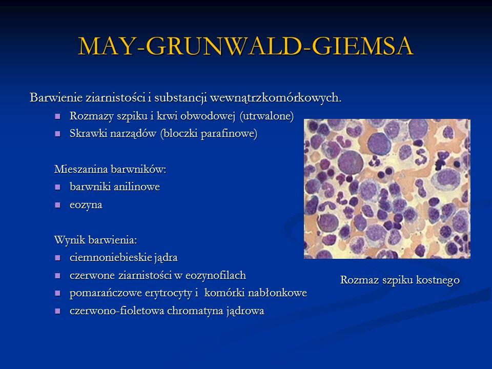 MAY-GRUNWALD-GIEMSA Barwienie ziarnistości i substancji wewnątrzkomórkowych.