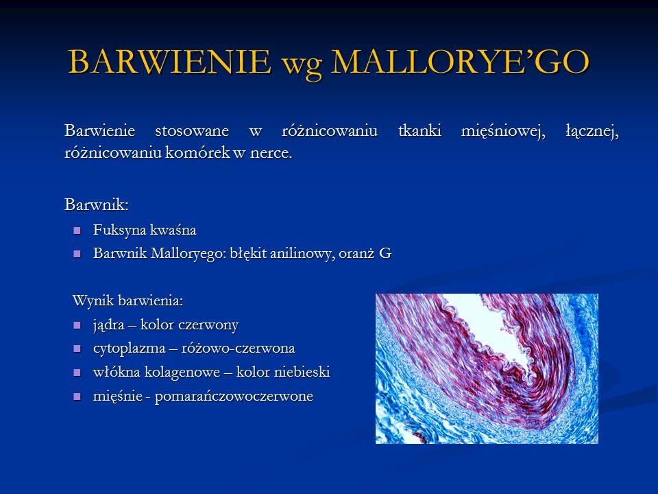 BARWIENIE wg MALLORYE'GO Barwienie stosowane w różnicowaniu tkanki mięśniowej, łącznej, różnicowaniu komórek w nerce.