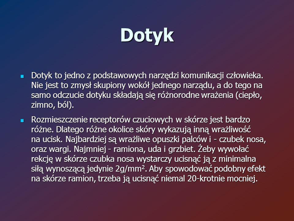 Dotyk Dotyk to jedno z podstawowych narzędzi komunikacji człowieka.